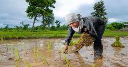 Arbeiterin in Isaan