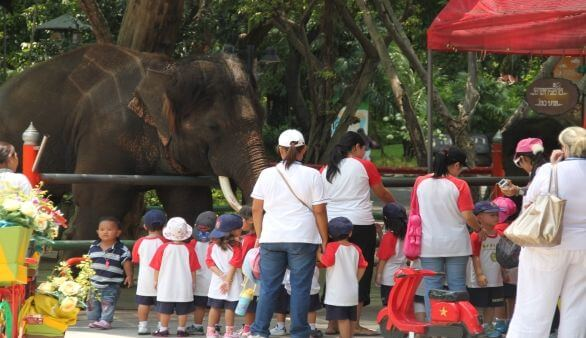 Dusit Zoo in Bangkok
