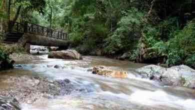 Nationalpark in Lampang